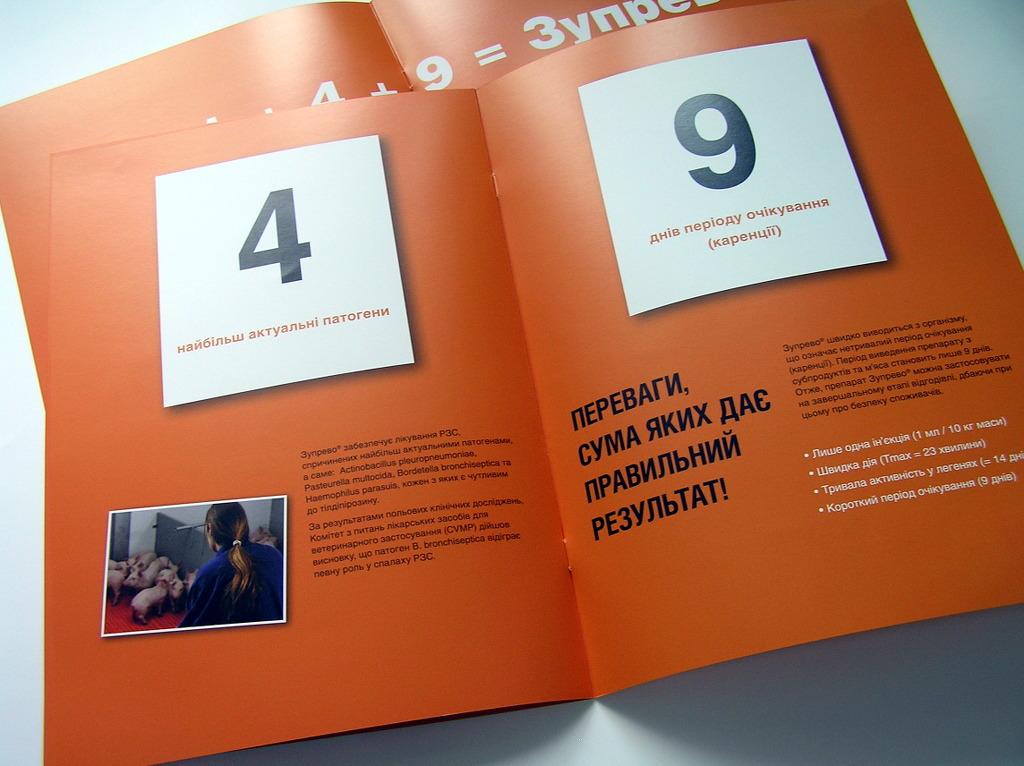 программа для печати брошюр